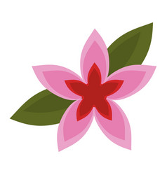 flower tropical exotic icon vector image
