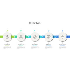 modern infographic options template vector image