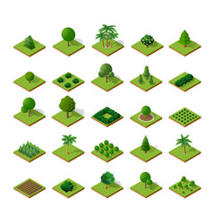 Trees forest camping vector