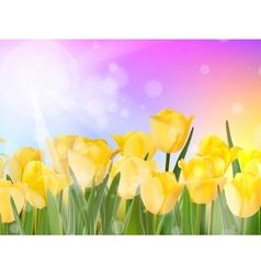 Tulips growing in garden on green bokeh EPS 10 vector image