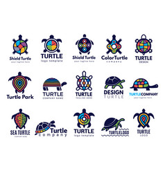 turtle symbols business logo wild sea animals vector image