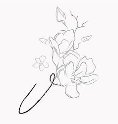 Handwritten line drawing floral logo monogram v vector