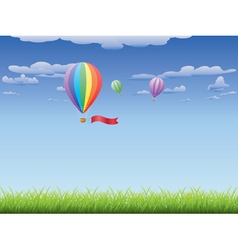 Hot air balloons over grass field vector image