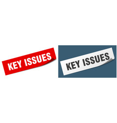 Key issues paper peeler sign set key issues vector