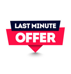 last minute offer commercial pin web label element vector image