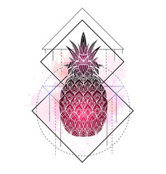 mystical a pineapple with a contour drawing vector image