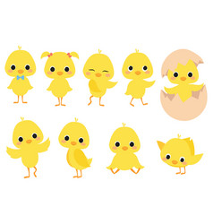 set cartoon chicks a collection cute yellow vector image
