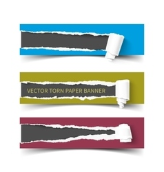 Set of three torn paper banners with rolls vector