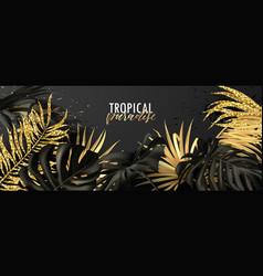 summer bannertropical paradisebeautiful vector image