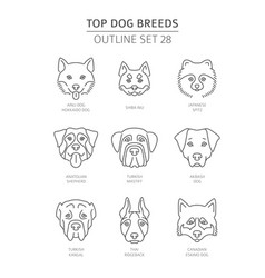 Top dog breeds pet outline collection vector