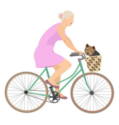 Woman rides bicycle with yorkshire terrier in vector