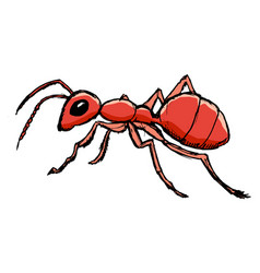 red ant from forest vector image vector image