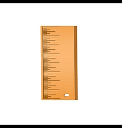 wood ruler vector image vector image