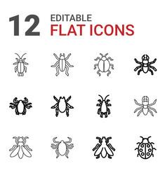 beetle icons vector image