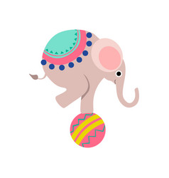 Elephant balancing on colorful ball cute funny vector