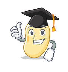 Graduation soy bean character cartoon vector