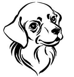 Hand drawn portrait of dog labrador Black and vector image