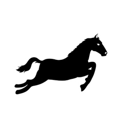 horse ride equine icon graphic vector image