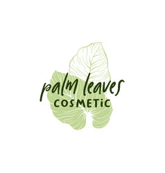 palm leaves hand drawn logotype layout vector image