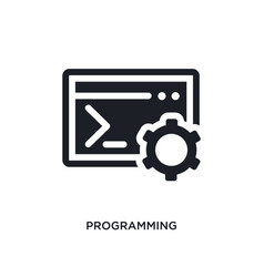 Programming isolated icon simple element from vector