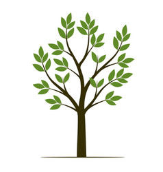 Shape tree with leaves fruits and roots vector