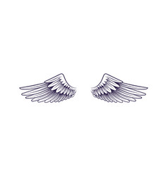 sketch angel wings flying hand drawn wing vector image