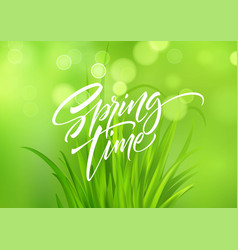 spring time handwritten calligraphy lettering with vector image
