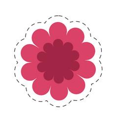 gerbera flower spring color cut line vector image