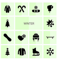 14 winter icons vector image