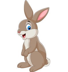 cartoon happy rabbit isolated on white background vector image