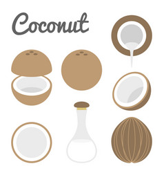 Coconut icon vector