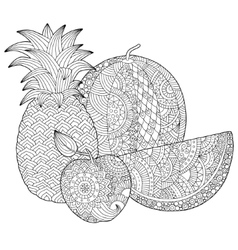 hand drawn pineapple watermelon apple vector image