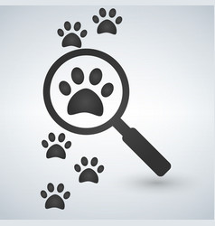 magnifying glass over the footprints vector image