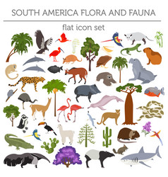 South america flora and fauna flat elements vector
