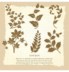 Vintage poster design with branches vector