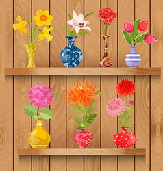 Wooden shelves with collection of glass vases with vector image
