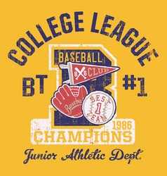 baseball kids college league champ vector image