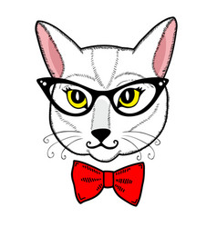 Cute cat face on the white background vector