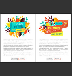 Exclusive offer only one day vector