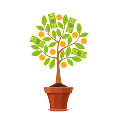 financial plant green tree in pot with vector image