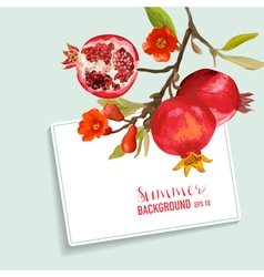 Pomegranates and Flowers Card Fruit Background vector image