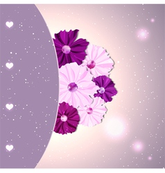 Springtime Colorful Cosmos Flower vector