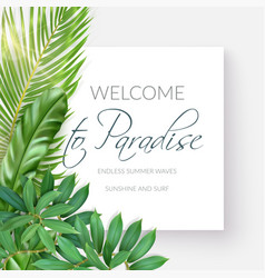 Summer tropical background with exotic palm leaves vector