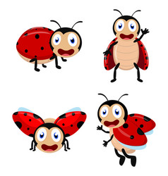 cute ladybug cartoon cartoon collection set vector image vector image