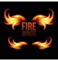 Wings in Flame and Fire on black vector image