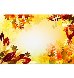 Fall Background vector image vector image