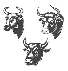 bull heads emblems isolated on white background vector image vector image