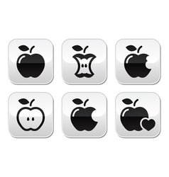 Apple apple core bitten half buttons vector image