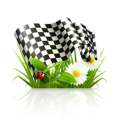Checkered flag in grass vector image