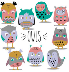 hand sketch owls colored vector image